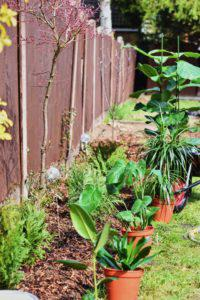 7 landscape projects to help improve your home